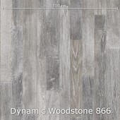 Interfloor Dynamic Woodstone - Dynamic Woodstone 866